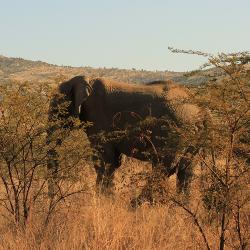 Dicas para planejar a viagem – África do Sul